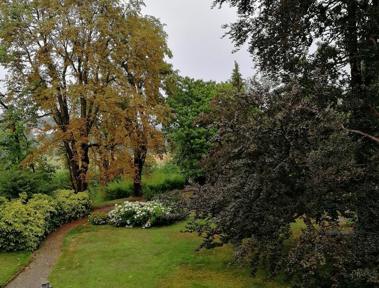 Dandelion Como - Il Parco Inglese 1